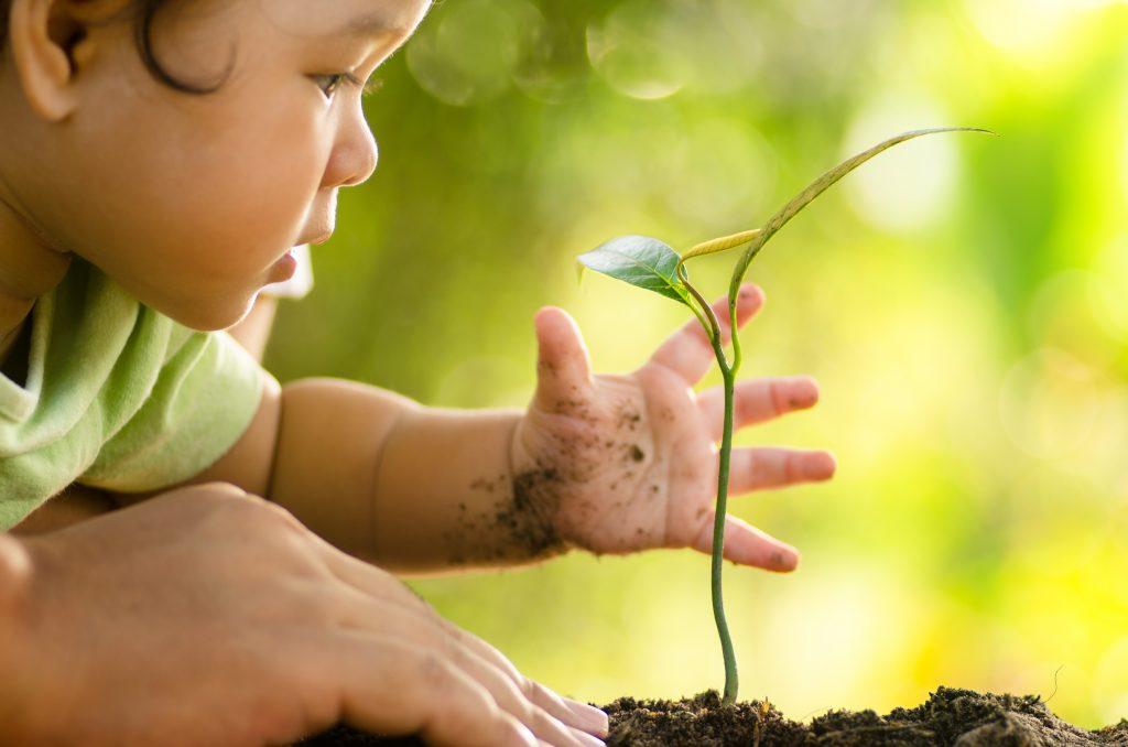 MANIFEST 2020:   o vplyve stavebníctva na životné prostredie